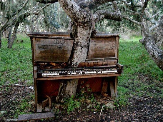 Salvaging Pianos Dean Petrich